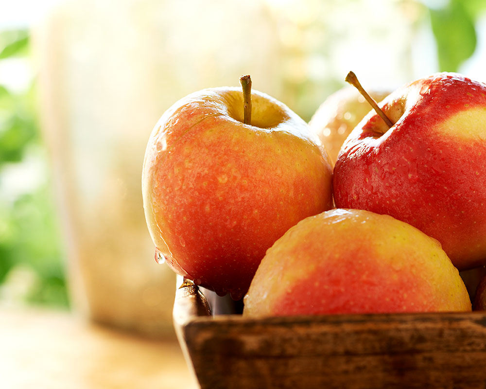 140924-JM-Apples.jpg